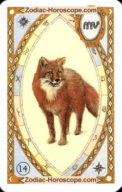 The fox, monthly Love and Health horoscope January Libra
