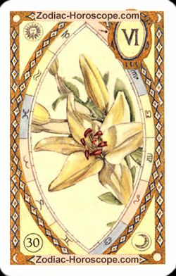 The lily, monthly Love and Health horoscope February Libra