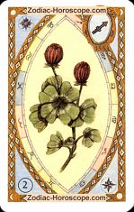 The clover astrological Lenormand Tarot