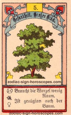 The tree, monthly Libra horoscope January