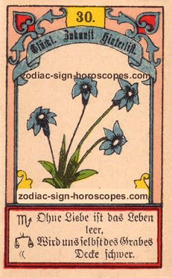 The lily, monthly Libra horoscope January
